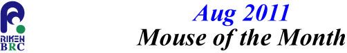 mouse_of_month_201108