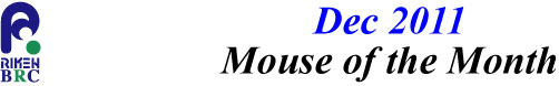 mouse_of_month_201112