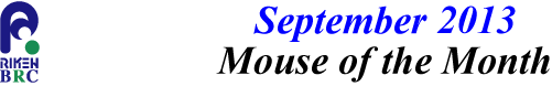 mouse_of_month_201309