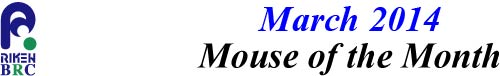 mouse_of_month_201403