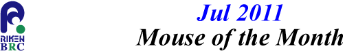 mouse_of_month_201107